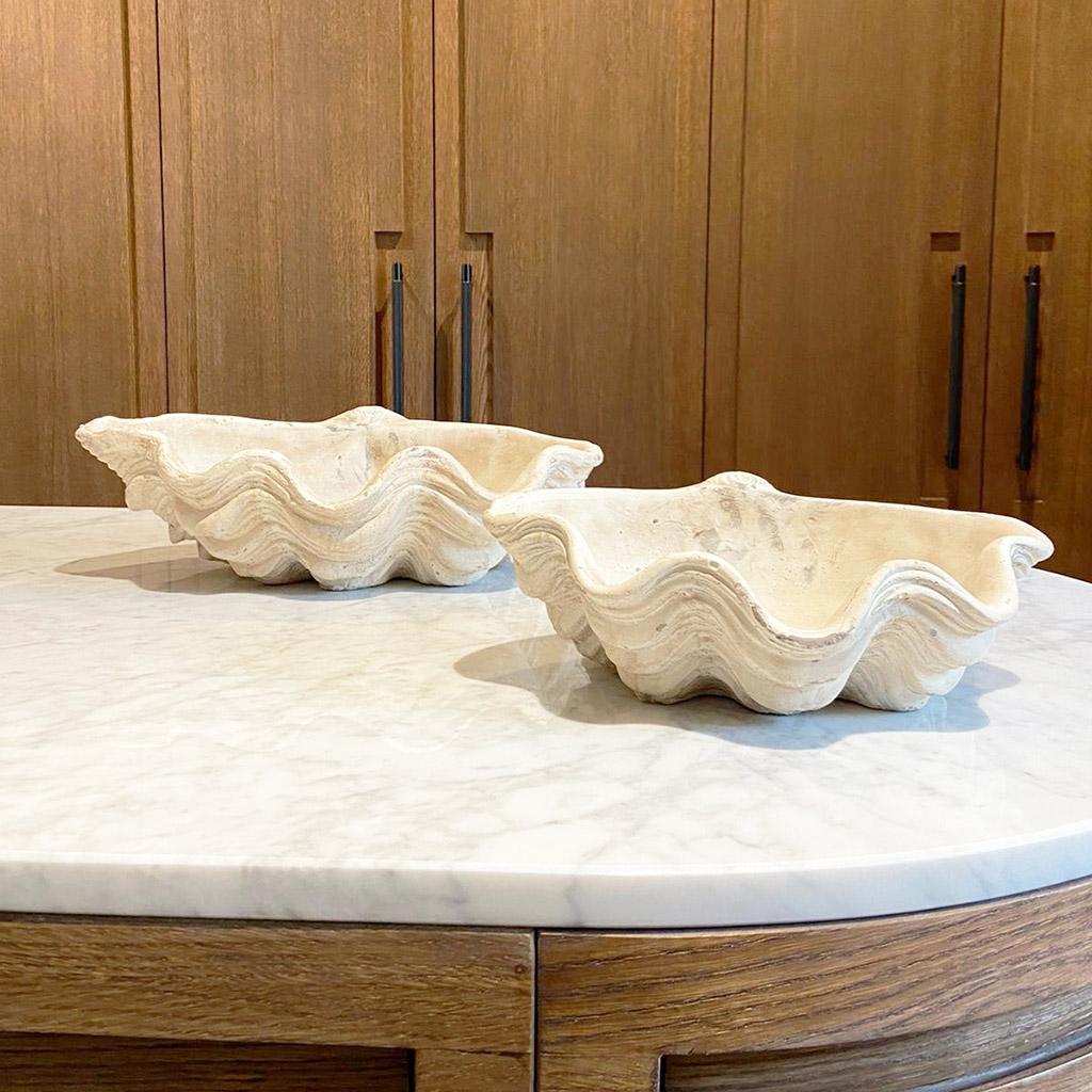 concha de ceramica